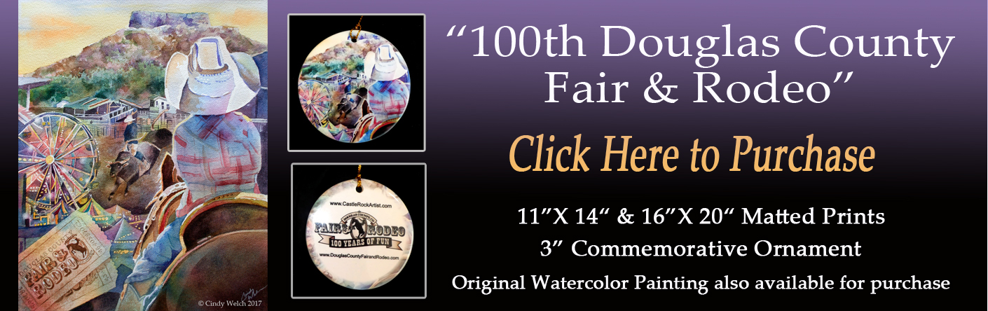 DC Fair Release WEB Banner