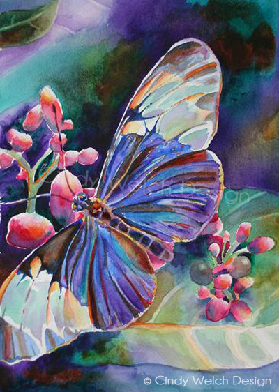 butterfly_water