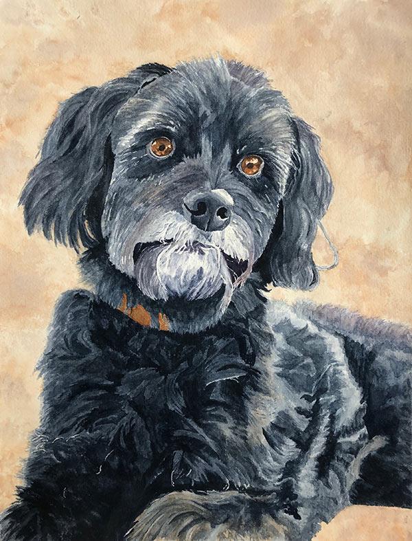 Teresas dog2